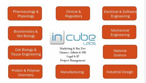 InCube Labs structure and capabilities
