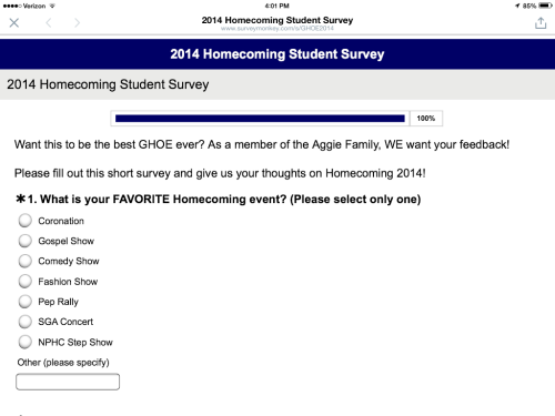 Screenshot of student survey